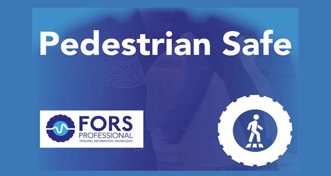 eLearning module 'Pedestrian Safe'
